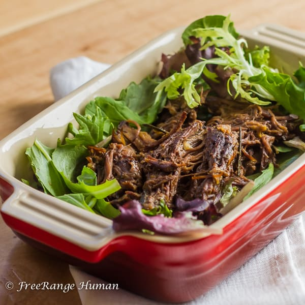 Shredded beef in a red casserole dish